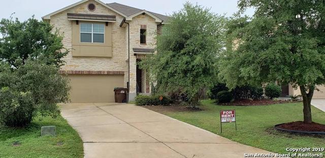 223 Redbird Circle, San Antonio, TX 78253 (MLS #1385049) :: ForSaleSanAntonioHomes.com