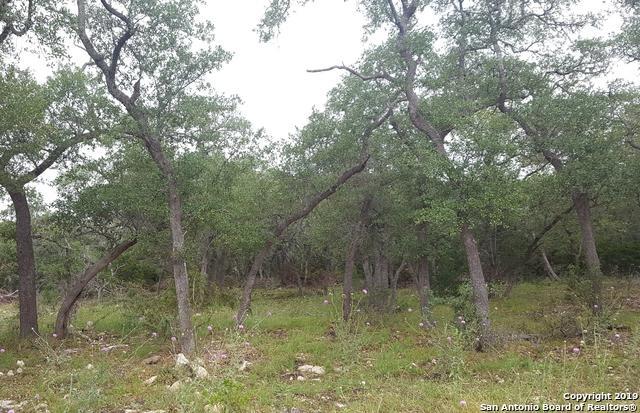 2224 Cascada Pkwy, Spring Branch, TX 78070 (MLS #1385080) :: The Gradiz Group