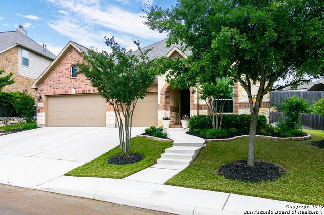 3839 Ox-Eye Daisy, San Antonio, TX 78261 (MLS #1385437) :: Carter Fine Homes - Keller Williams Heritage