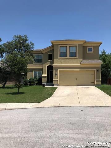 26102 Raven Feather, San Antonio, TX 78260 (MLS #1385467) :: Carter Fine Homes - Keller Williams Heritage