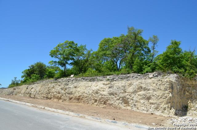 LOT 59 Ivory Cyn, San Antonio, TX 78255 (MLS #1385516) :: Carter Fine Homes - Keller Williams Heritage
