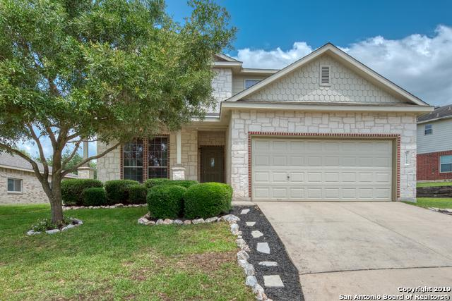 26148 Amber Sky, San Antonio, TX 78260 (MLS #1385518) :: Exquisite Properties, LLC