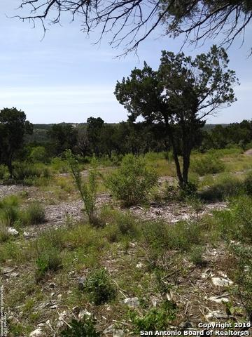 LOT 22 BLOCK 4 Pr 2771, Mico, TX 76376 (MLS #1385549) :: Erin Caraway Group
