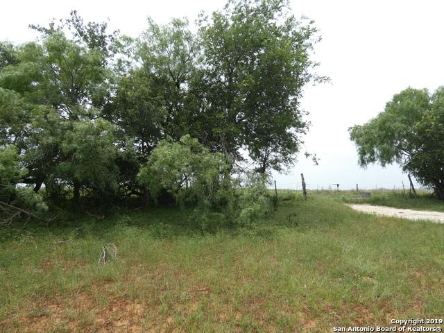 00000 Adkins St Hedwig Rd, St Hedwig, TX 78152 (MLS #1385685) :: River City Group