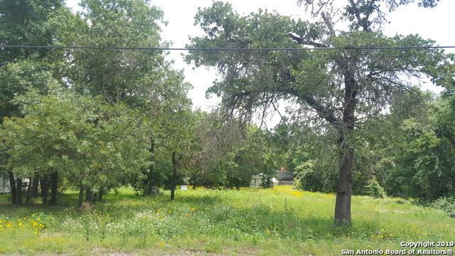 23038 Fawn Trail Dr, Elmendorf, TX 78112 (MLS #1385814) :: Alexis Weigand Real Estate Group