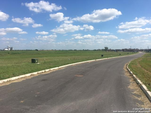 716 Highland St, Poth, TX 78147 (MLS #1385890) :: Alexis Weigand Real Estate Group