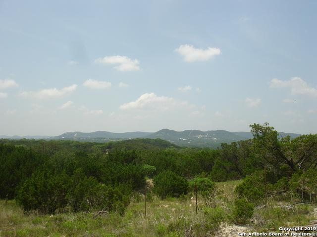 456 Live Oak Place, Pipe Creek, TX 78063 (MLS #1385948) :: NewHomePrograms.com LLC