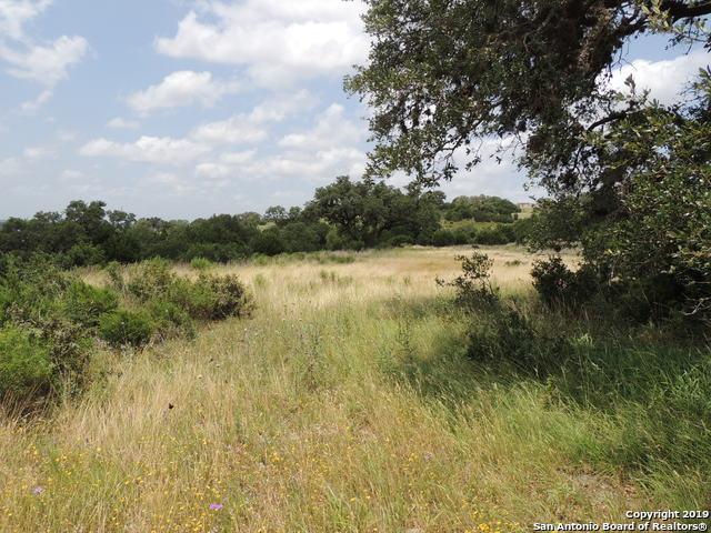 516 Rio Ridge Pkwy, Spring Branch, TX 78070 (MLS #1385996) :: Tom White Group