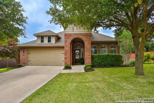 23443 Treemont Park, San Antonio, TX 78261 (MLS #1386127) :: Alexis Weigand Real Estate Group