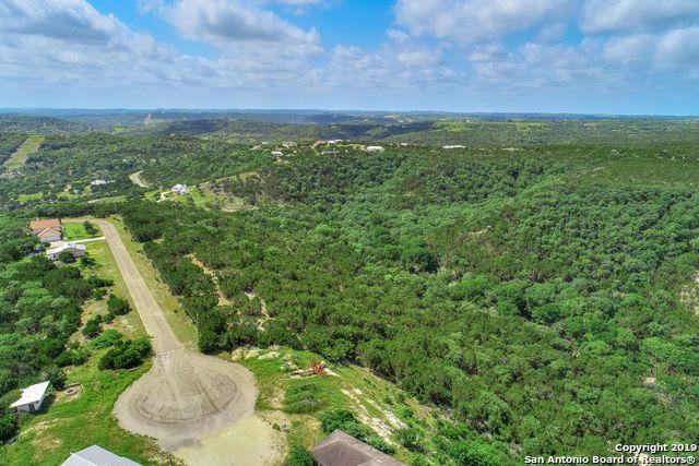 105 W High Bluff Circle, Boerne, TX 78006 (MLS #1386441) :: Alexis Weigand Real Estate Group