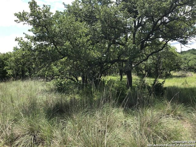 LOT 34 Lipan Apache Run, Blanco, TX 78606 (MLS #1386624) :: Erin Caraway Group