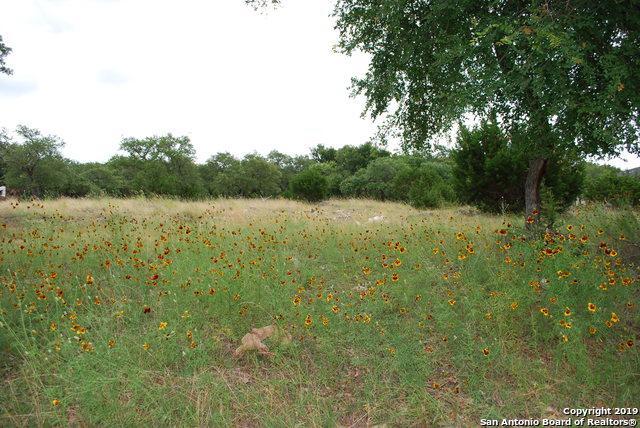 447 Havasu Pt, Spring Branch, TX 78070 (MLS #1387013) :: BHGRE HomeCity