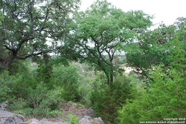 468 Havasu Pt, Spring Branch, TX 78070 (MLS #1387016) :: BHGRE HomeCity