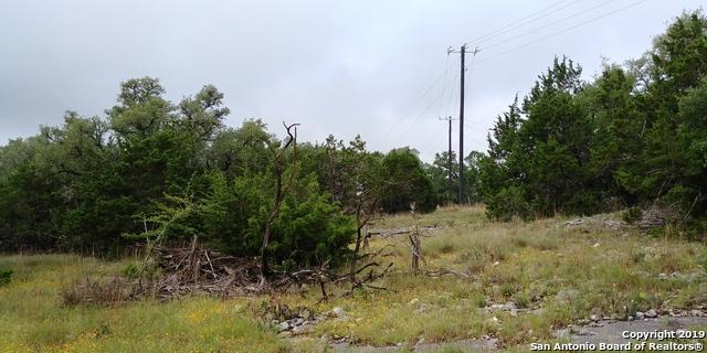 117 Asa Harold, Blanco, TX 78606 (MLS #1387063) :: Erin Caraway Group