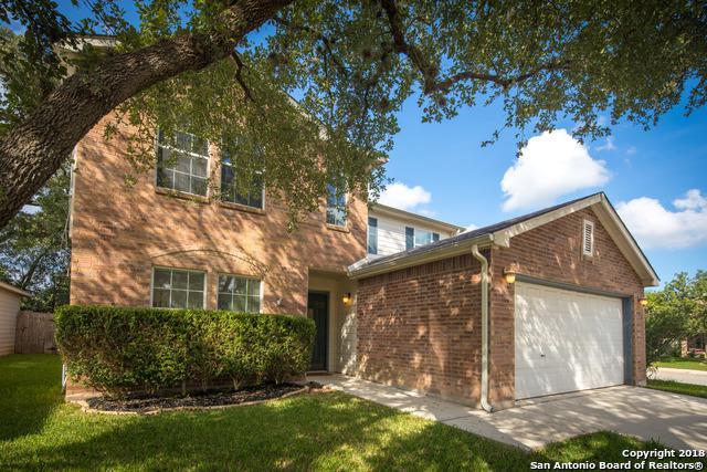 100 Michelle Ln, Boerne, TX 78006 (MLS #1387513) :: Niemeyer & Associates, REALTORS®