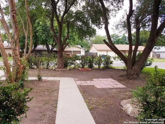 5030 Hacienda Dr, San Antonio, TX 78233 (MLS #1387649) :: Alexis Weigand Real Estate Group