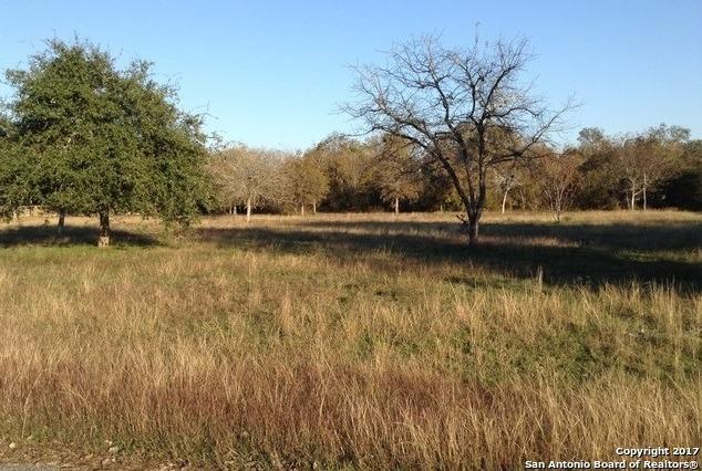 0000 Deerslayer Dr, Seguin, TX 78155 (MLS #1387652) :: Erin Caraway Group