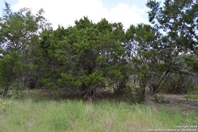 1873 Canyon Lake Dr, Canyon Lake, TX 78133 (MLS #1388181) :: Erin Caraway Group
