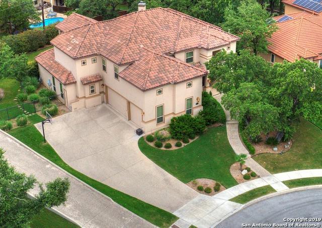 25007 Cheshire Ridge, San Antonio, TX 78260 (#1388381) :: The Perry Henderson Group at Berkshire Hathaway Texas Realty