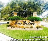 427 Cielo Vista, Canyon Lake, TX 78133 (MLS #1388438) :: Erin Caraway Group