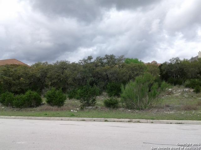 25315 Wentworth Way, San Antonio, TX 78260 (MLS #1388790) :: Vivid Realty