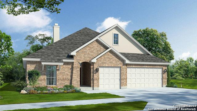 225 Kilkenny, Cibolo, TX 78108 (MLS #1389326) :: The Mullen Group | RE/MAX Access