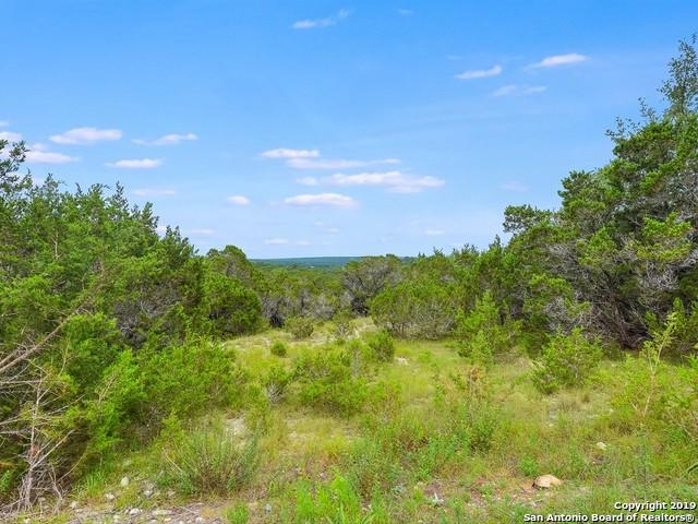 176 Stallion Estates Dr, Spring Branch, TX 78070 (MLS #1389356) :: Erin Caraway Group
