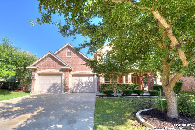 18727 Castellani, San Antonio, TX 78258 (MLS #1389553) :: The Castillo Group
