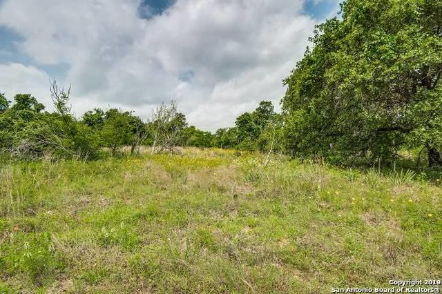 24389 Forest Dr, San Antonio, TX 78264 (MLS #1389615) :: Erin Caraway Group