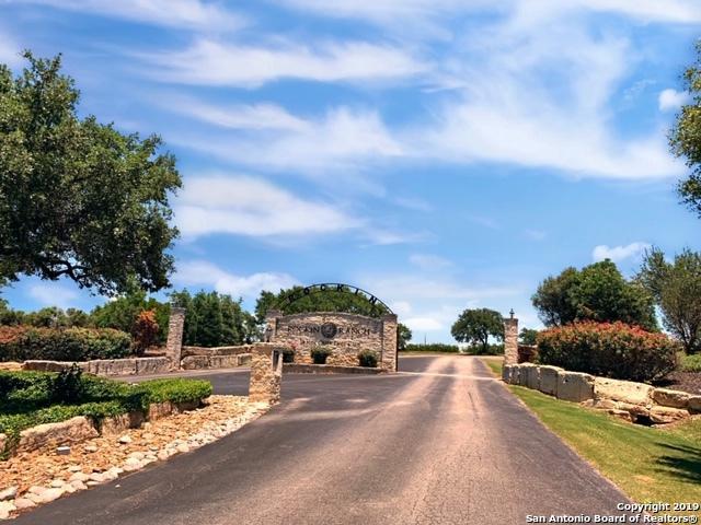 107 Riley Wood, Blanco, TX 78060 (MLS #1389789) :: Erin Caraway Group