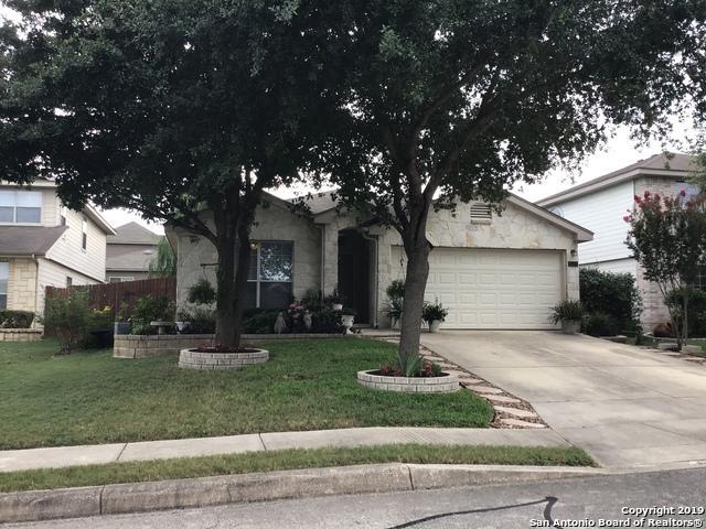 8239 Shumard Oak Dr, San Antonio, TX 78223 (MLS #1390197) :: BHGRE HomeCity