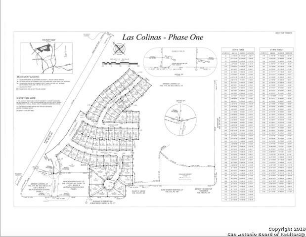 307 Mariposa Circle, Karnes, TX 78119 (MLS #1390243) :: Erin Caraway Group
