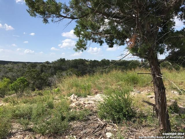 LOT 6 Pr 2772, Mico, TX 78056 (MLS #1390282) :: Erin Caraway Group