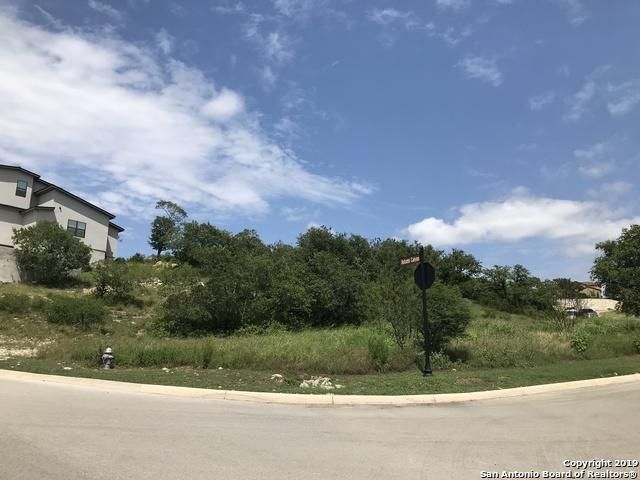 LOT 23 Ivory Canyon, San Antonio, TX 78255 (MLS #1390319) :: Neal & Neal Team