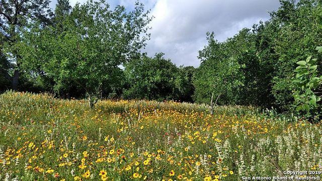 210 Hidden Meadows Circle, Poteet, TX 78065 (MLS #1390491) :: Bexar Team