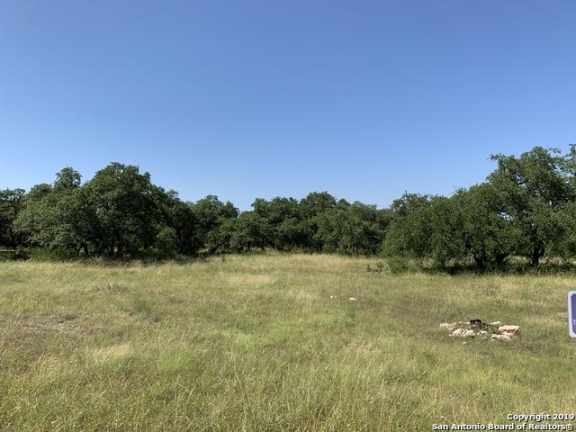 1623 Lake Ridge Blvd, Canyon Lake, TX 78133 (MLS #1390909) :: The Heyl Group at Keller Williams
