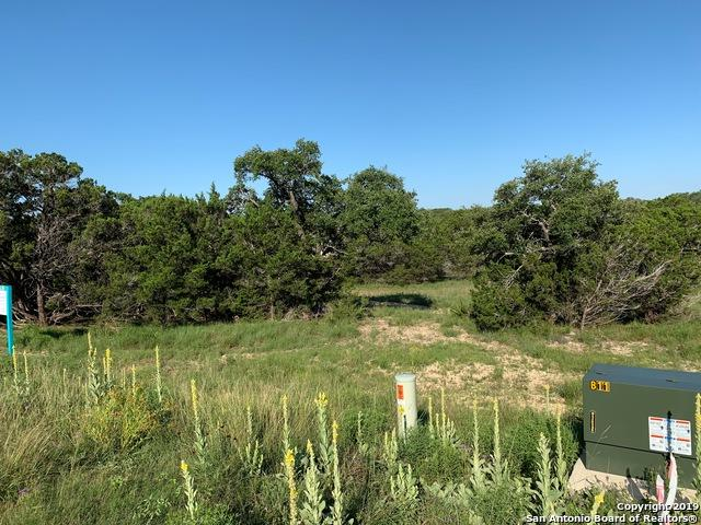973 Malbec Loop, Canyon Lake, TX 78133 (MLS #1391002) :: BHGRE HomeCity