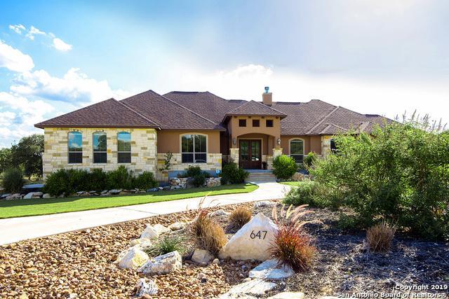 647 Windmill Ranch Rd, Spring Branch, TX 78070 (MLS #1391092) :: BHGRE HomeCity
