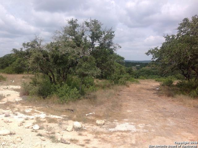 23707 E High Garden, San Antonio, TX 78255 (MLS #1391134) :: Neal & Neal Team