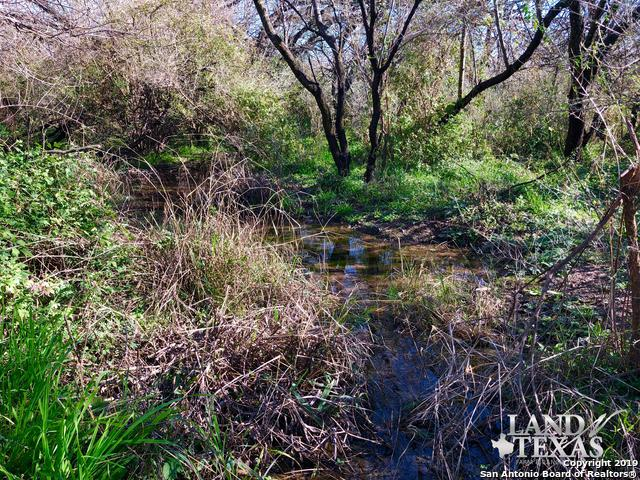 O Pacho Garcia Road, Dilley, TX 78017 (MLS #1391278) :: Exquisite Properties, LLC