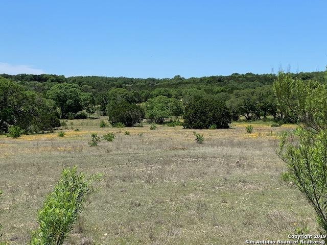 0 Canyon Curve, Spring Branch, TX 78070 (MLS #1391383) :: Erin Caraway Group