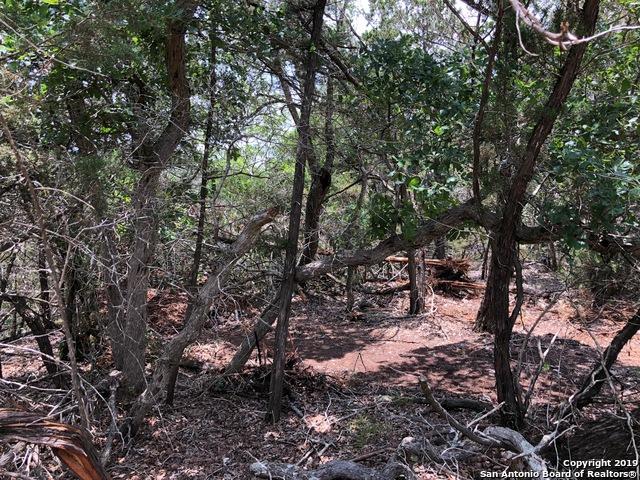 109 Alpine Trail, Kendalia, TX 78027 (MLS #1391696) :: Erin Caraway Group