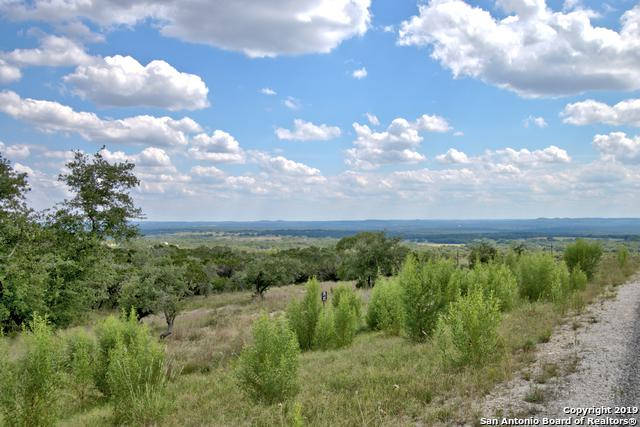 81 High Point Ranch Rd, Boerne, TX 78006 (MLS #1391743) :: Alexis Weigand Real Estate Group