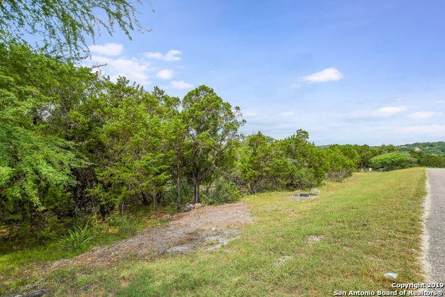 169 Longwood, New Braunfels, TX 78132 (MLS #1391752) :: The Mullen Group | RE/MAX Access