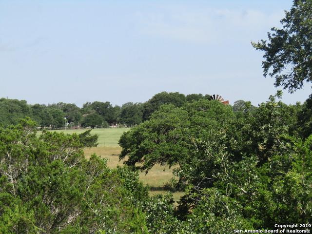 247 El Grande Cove, Blanco, TX 78606 (MLS #1391906) :: Vivid Realty