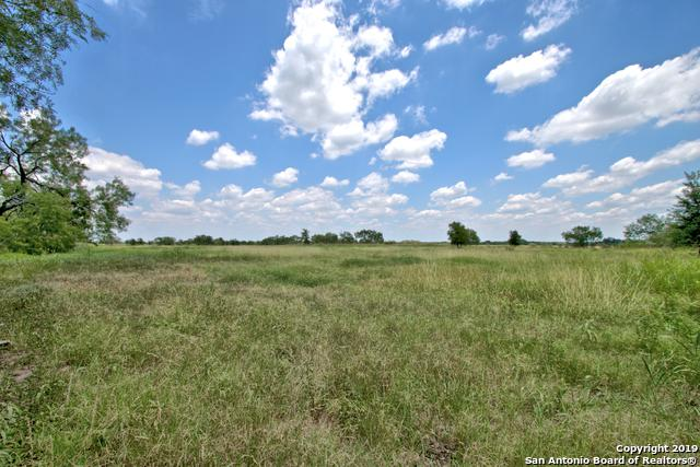 10495 N Gable Rd, St Hedwig, TX 78152 (MLS #1391993) :: BHGRE HomeCity