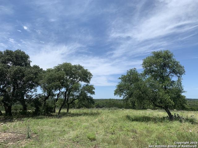 NA Upper Turtle Creek Road, Kerrville, TX 78028 (MLS #1392130) :: Vivid Realty
