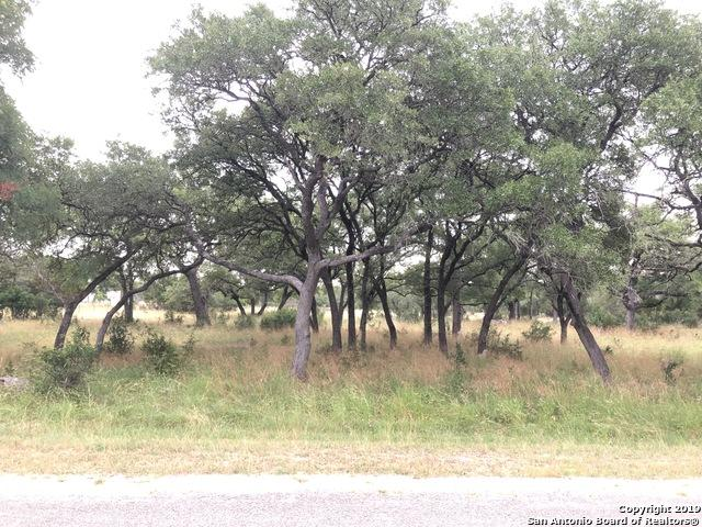 159 Adams Way, New Braunfels, TX 78133 (MLS #1392131) :: NewHomePrograms.com LLC