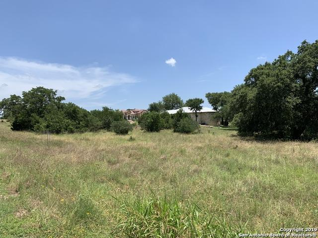 1211 Decanter Dr, New Braunfels, TX 78132 (MLS #1392148) :: NewHomePrograms.com LLC