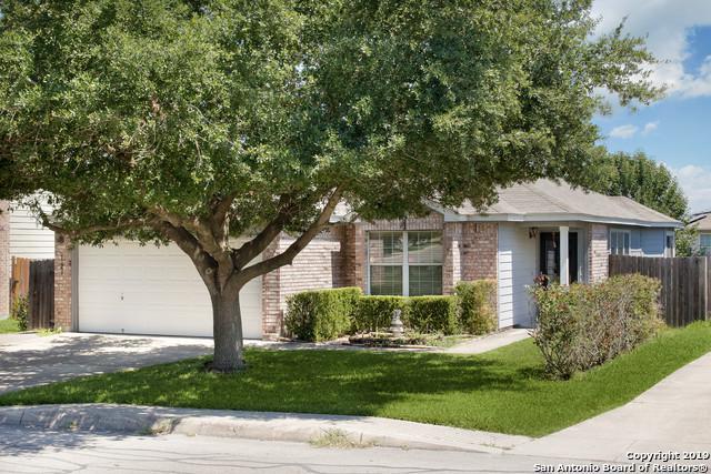 6129 Jackies Farm, San Antonio, TX 78244 (MLS #1392207) :: Exquisite Properties, LLC